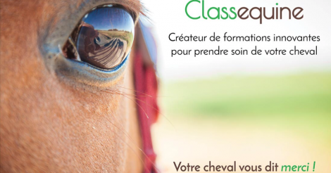 Startup <h3>CLASSEQUINE</h3> France French Tech
