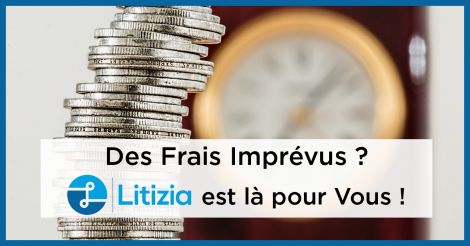Startup <h3>Litizia</h3> France French Tech