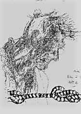 Portrait de yoruk